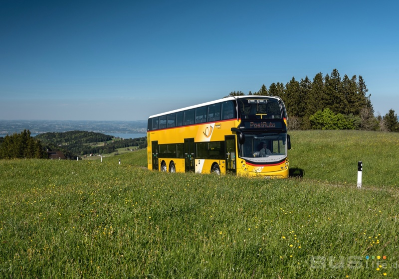 Yellow double-decker buses in Eastern Switzerland
