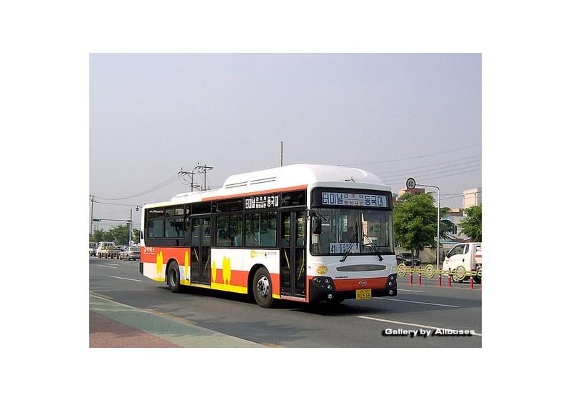 경주 구.금아버스 BC211M Royal Hi-city