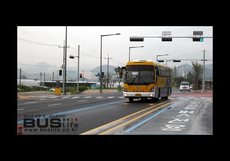 대전 도안 중앙버스전용차로