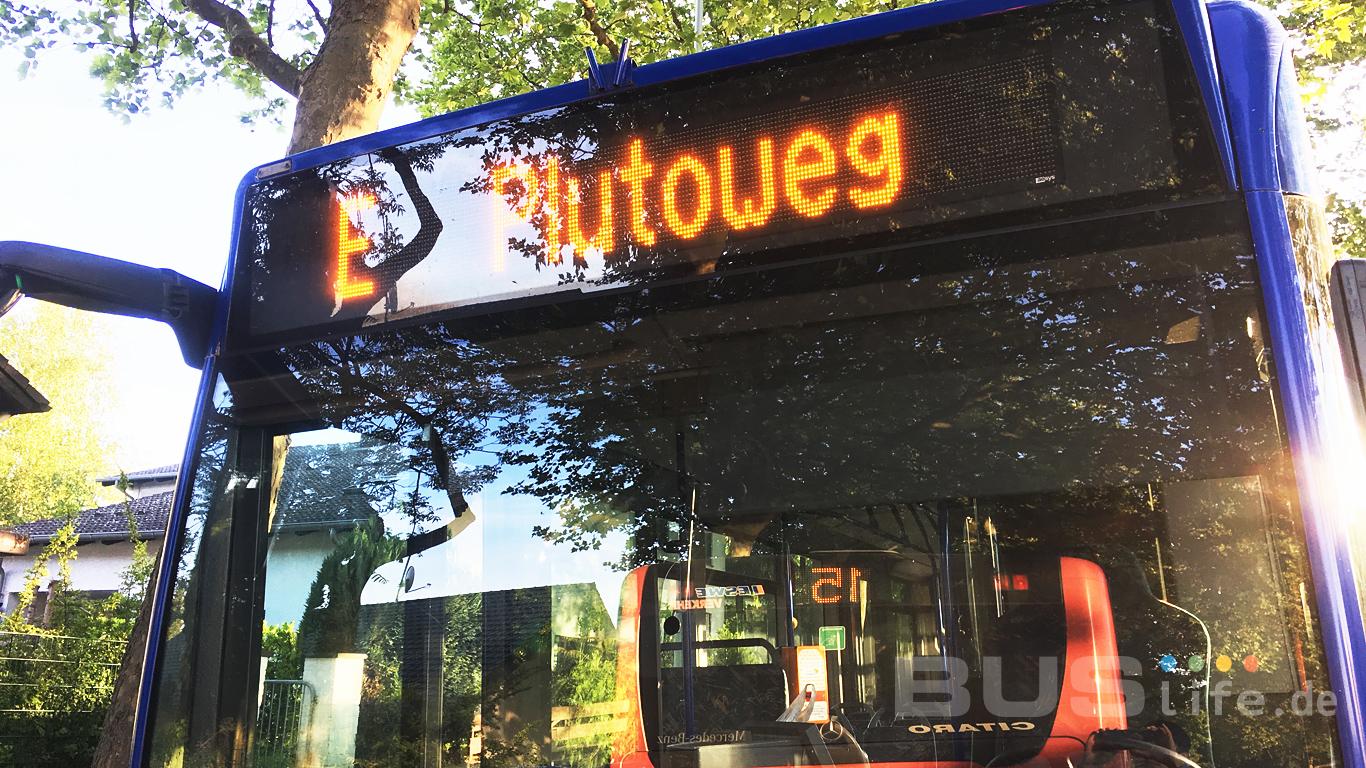 [최원호의 독일 버스 이야기 #006] 시내버스 노선운영 방식